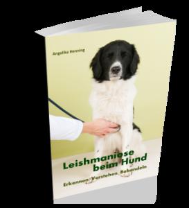 Leishmaniose Beim Hund Erkennen Verstehen Behandeln
